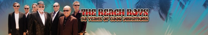 Image result for beach boys amt