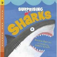 Funschool: Sharks