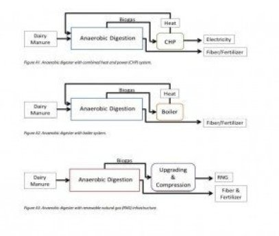 Diagrams of three alternative systems for an anaerobic digester project.