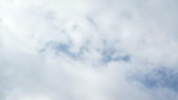 Sedona Vortex Bird 1
