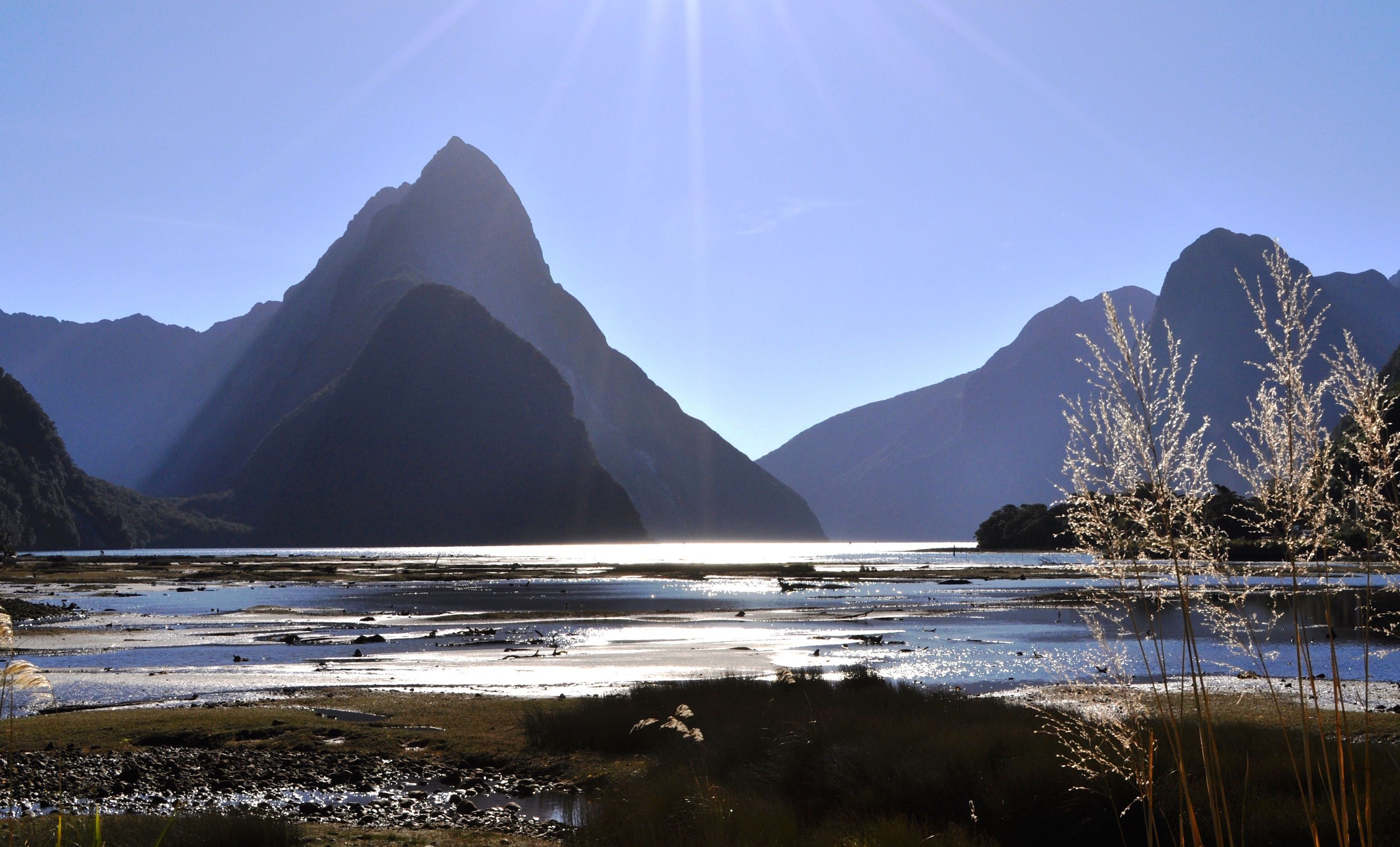 Friday Five…Milford Track and Li Chun