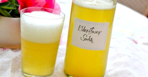 Elderflower Soda