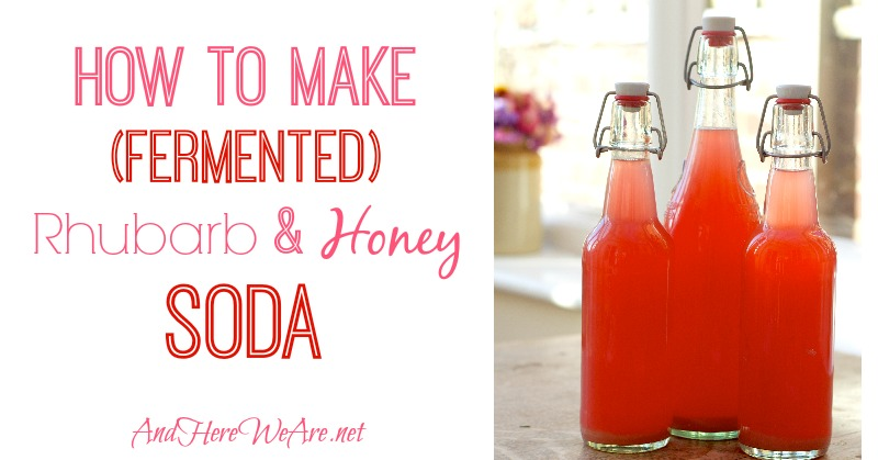 How to Make Rhubarb Soda (It's naturally probiotic!)