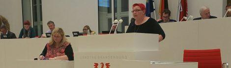 Rede zum Antrag der CDU zum Verbot von Kinderehen