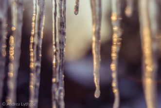 Icicles-8