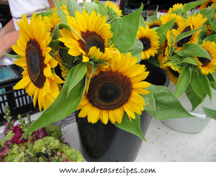 Andrea's Recipes = Sunflowers at the Central New York Regional Market, Syracuse