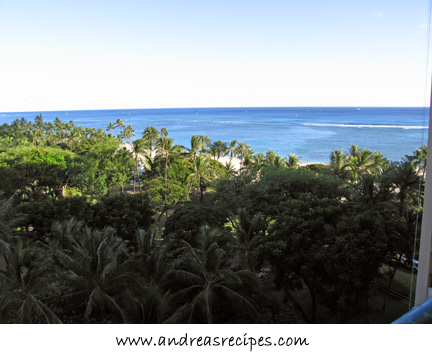 The view from the Hilton Hawaiian Village Hotel