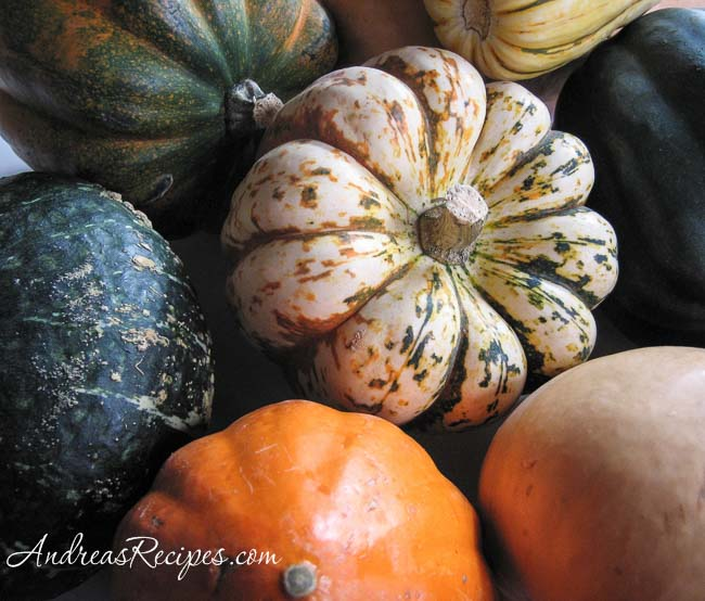 Squash collection - Andrea Meyers