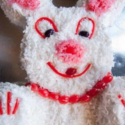 Easter Bunny Cake Recipe - Andrea Meyers