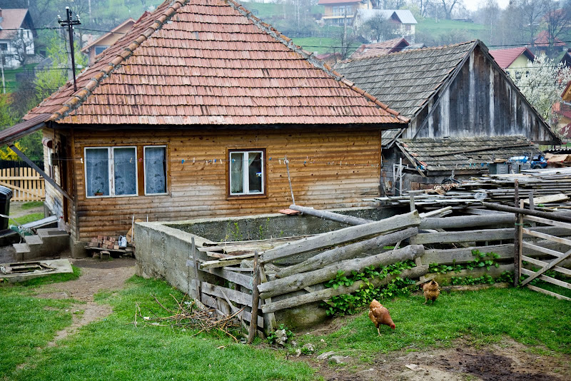 village life near Bran castle