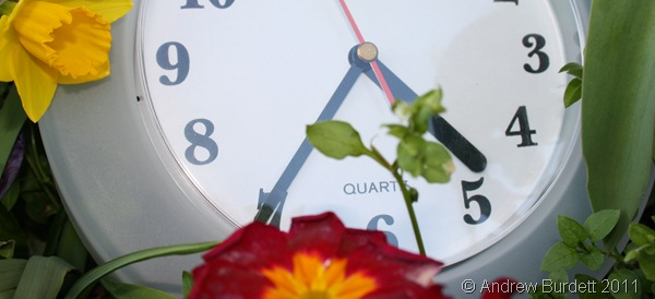 SUMMER-TIME_A clock I found strangely positioned in the garden.