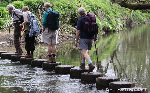 ONE STEP AT A TIME_Lin Luff crosses the River Mole.
