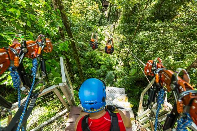 View from rainforest canopy platform of people racing on zipline