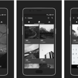 f-colors-and-its-60-high-quality-greyscale-wallpapers