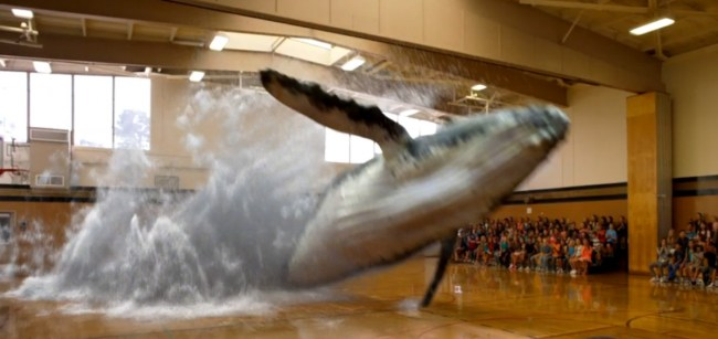 Was macht ein Wal in einem Turnsaal? Magic Leap weiß es (Screenshot Magic Leap)