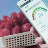 Changhong H2: Smartphone mit Molekularscanner
