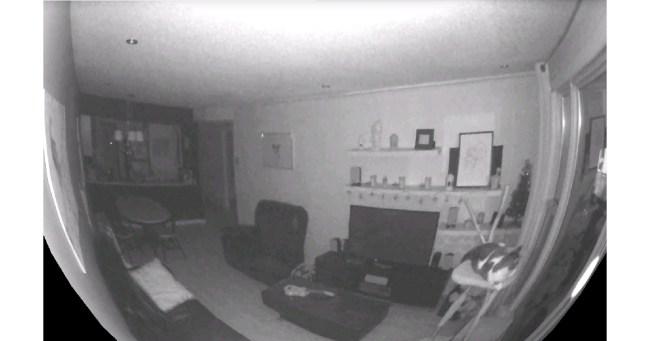 """Mit Hilfe ihrer Infrarot-LEDs kann die """"Piper""""-Kamera auch bei Dunkelheit Videos aufnehmen. (Foto: Icontrol Networks)"""
