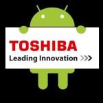Toshiba bringt 4 Zoll-Slider auf den Markt
