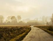 Morning Haze, courtesy SplitShare.com