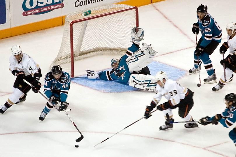 ice hockey sharks