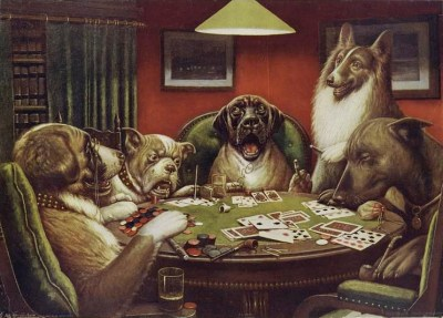 dogs playing powerball