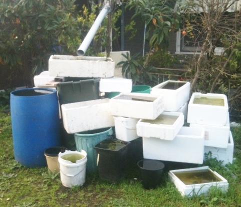 rainwater collection fail