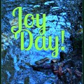 Joy Day! - Do Not Fear - AnExtraordinaryDay.net