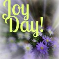 Joy Day! - Anemones - AnExtraordinaryDay
