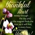 #Thankful Heart #Quote by Henry Ward Beecher :: Thankful Thursday :: AnExtraordinaryDay.net
