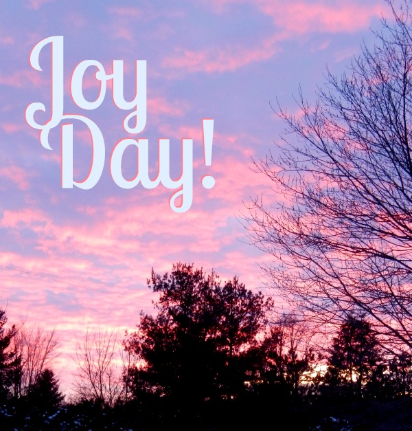 Joy Day! :: 2014 Word for the Year :: AnExtraordinaryDay.net