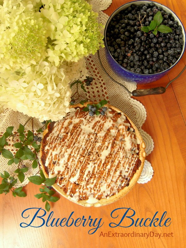 Bake Blueberry Buckle Coffee Cake  #CoffeeCakeRecipe  #Blueberry