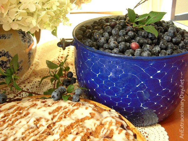 Graniteware Pail of Blueberries and Blueberry Buckle #CoffeeCakeRecipe