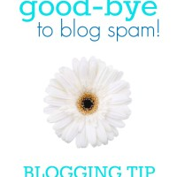 Say Good-bye to Blog Spam : How to Fix Comment Spam