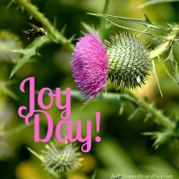 Heart Talk :: Spurgeon Quote :: Joy Day!