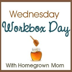 Wednesday workbox day250