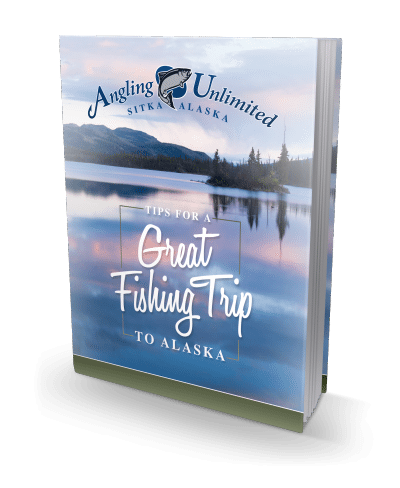 Tips for a Great Fishing Trip to Alaska eBook