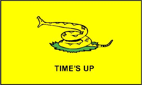 times_up_flag_z