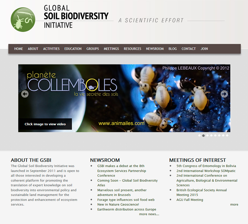 Global Soil Biodiversity Initiative