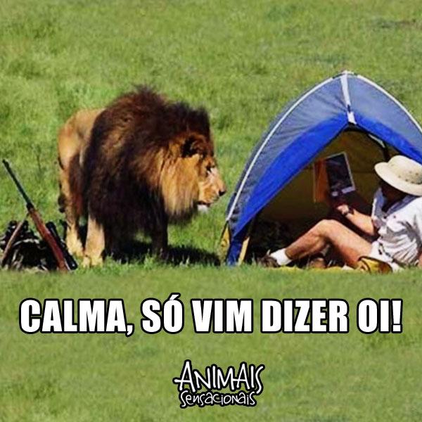 CALMA-SO-VIM-DIZER-OI