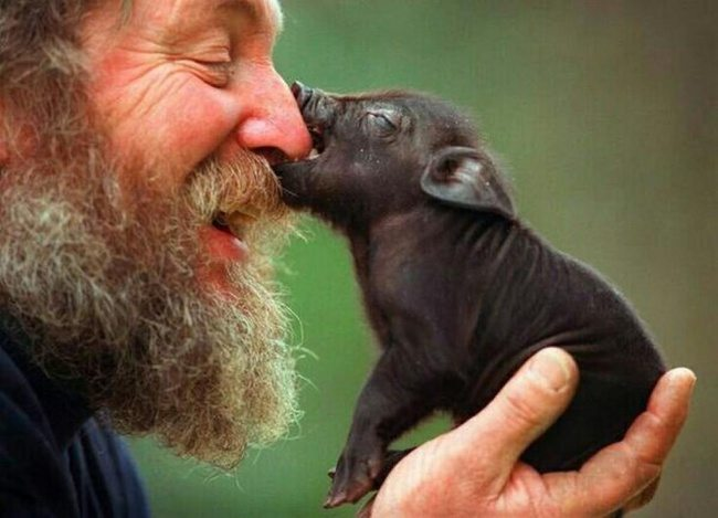11-outstanding-photos-showing-human-love-for-animals