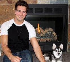 james maslow cute dog fox