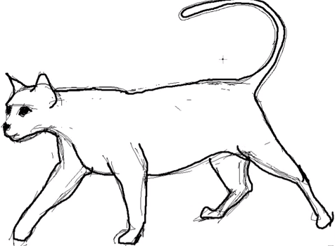 dessin de chat animozone.fr