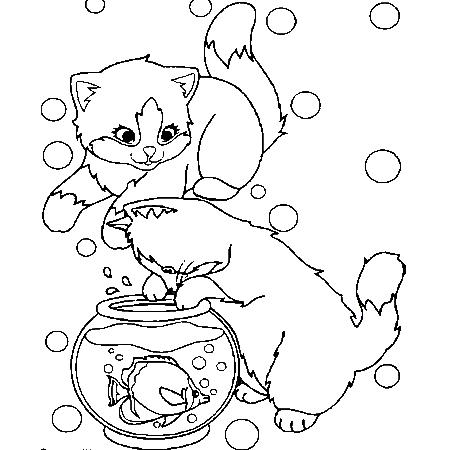 Dessin de chat - Animozone.fr