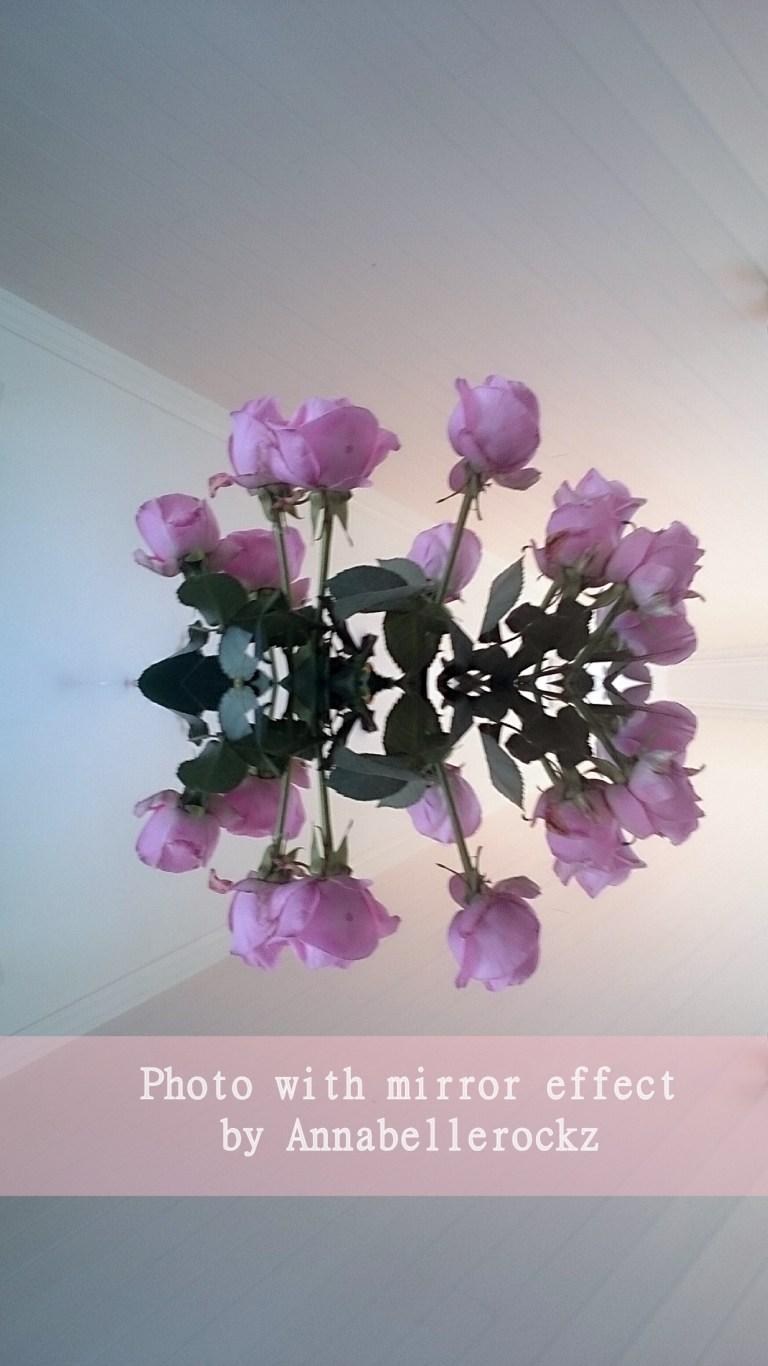 roses -miiror-effect Annabellerockz