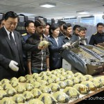 470 Turtles Seized at Thai Airport, Smuggler Arrested [Photos]