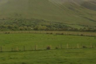 picture of Irish Green