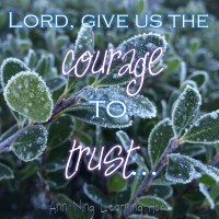 502.   Feb '16 - The Courage to Trust
