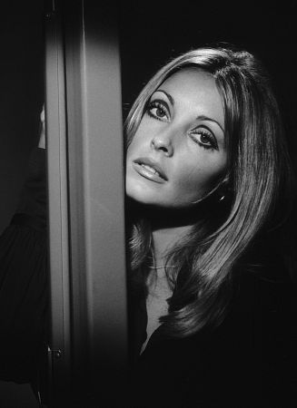 Mortes Trágicas no Universo Rock - Sharon Tate (1/6)