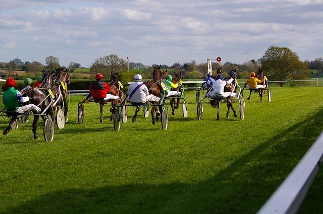horse-racing-719634_640