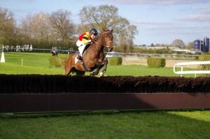 horse-racing-719640_640